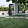 Cỏ nhân tạo sân vườn VLC381688