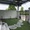 Cỏ nhân tạo sân vườn VLC381683C20